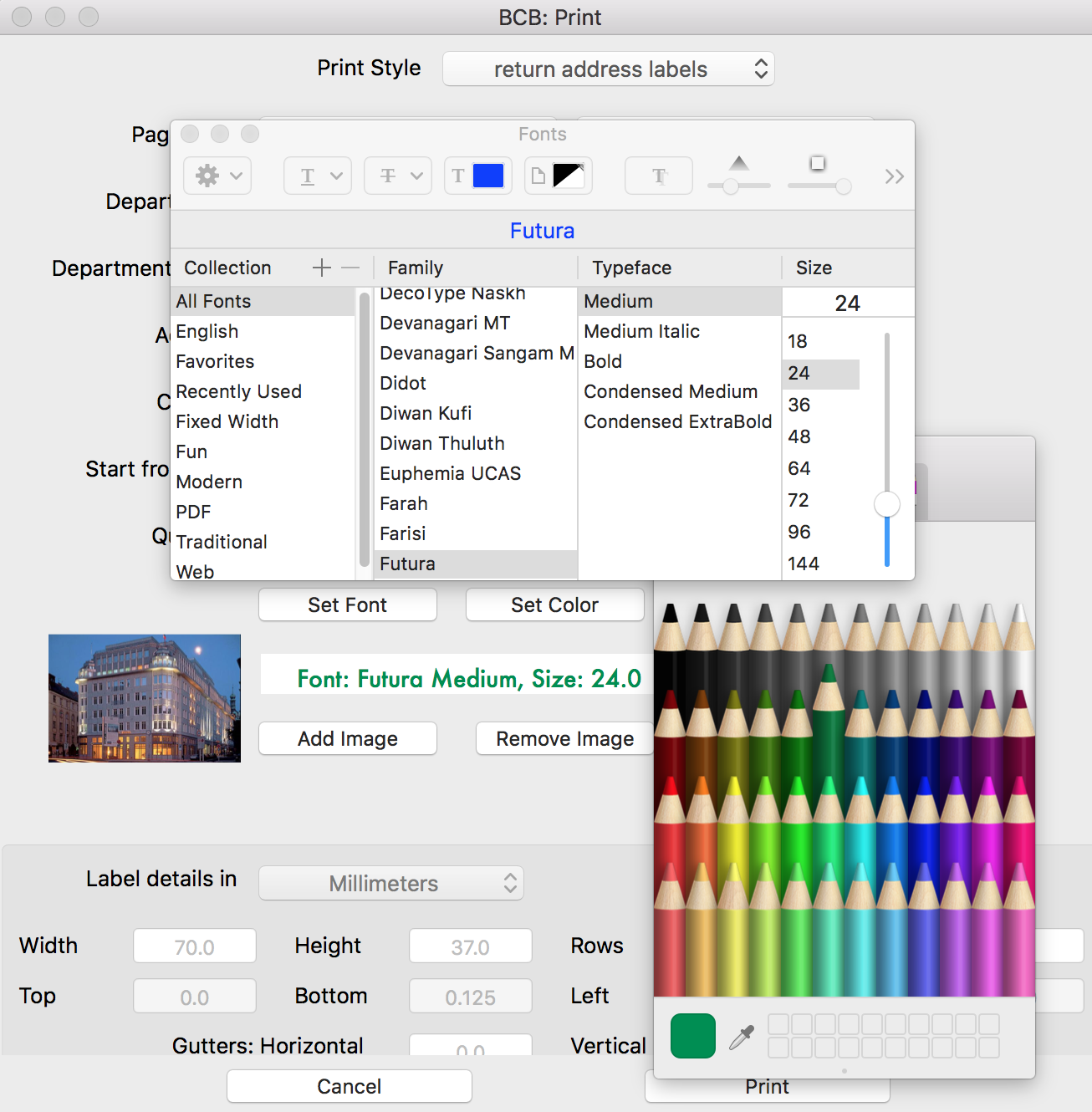 Customize mailing labels by adding an image and changing font size and color